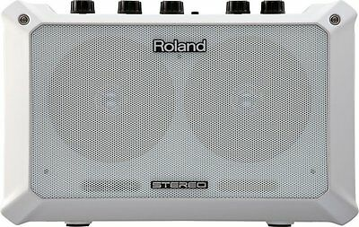 Roland Mobile Ba Amplifier With Psu Pa Cube Busking