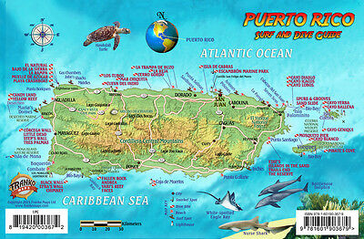 Puerto Rico Dive & Surf Map and Reef Creatures Guide Franko Laminated Fish Card