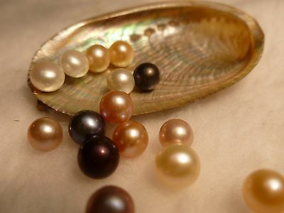 25) Round Pearls In Oyster Best Quality! Great Fun! Xmas Gift!6-9Mm