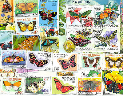 Butterflies & Moths-200 all different collection-large-medium-colourful lot