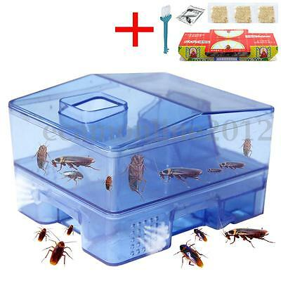 3 Doors Pest Control Tool Cockroach Trap Container Collect & Killer Catcher Box