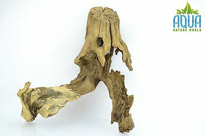 (A-5575)  Oak Bogwood Aquarium Wood (Red moor) Size L