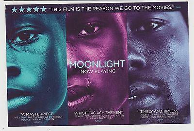 2016 Moonlight 8 Oscar Noms ~ Best Picture ~ Promotional Card Barry Jenkins Film