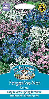 Mr Fothergills Forget Me Not Mixed Seed