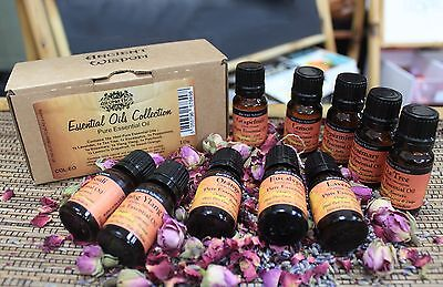 Aromatherapy Starter Kit Set 100% Pure Essential Oils 10ml Mixed Box Gift Pack