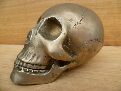 Old Ealry Very Rare Scull Car, Truck Mount, Old Large Scull (C242)