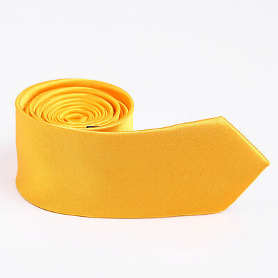 ZN1006 Yellow Plain Buy For Boyfriends Polyester Skinny Tie for Men By Epoint
