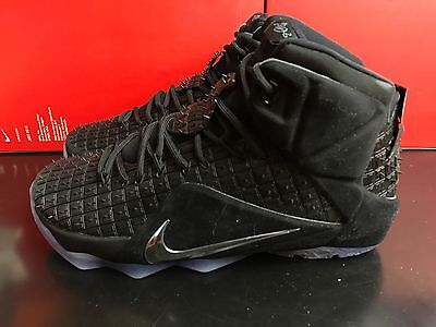 Nike Lebron XII EXT RC QS Basketball RUBBER CITY UK 7 EUR 41 Black 744286 001