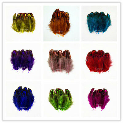 wholesale!10/50/100/200pcs beautiful natural pheasant feathers 4-8cm/2-3inch