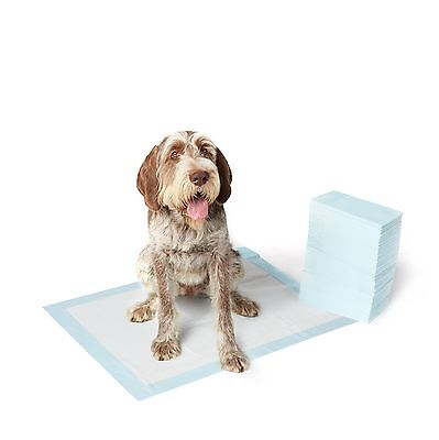 AmazonBasics Pet Training Pads Extra-Large - 40-Count