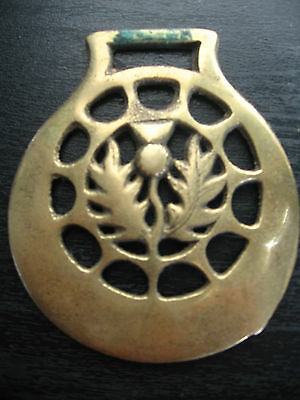 Horse Harness Brass Medallion Bridle Ornament Thistle