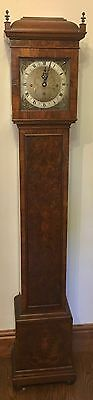 Elliott WESTMINSTER CHIME Burr Walnut Grandmother Miniature Grandfather Clock