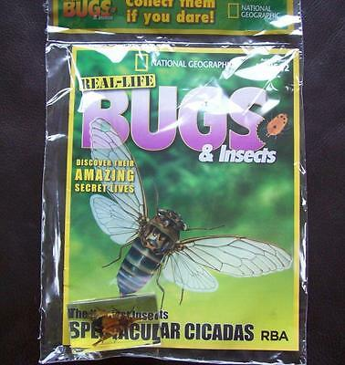Real Life Bugs & Insects, National Geographic, Issue 12 - Spectacular Cicadas