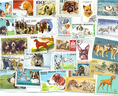 Dogs on stamps collection 300 all different-medium/large