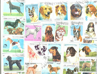 Dogs-200 all different stamps collection mainly large-medium size