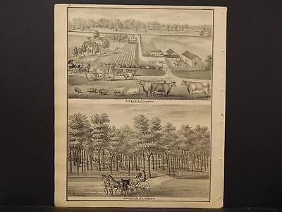 Ohio, Portage County Map, 1874, Engravings, Hudson, Wallace, Ely, J1#20