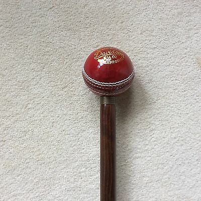 CRICKET BALL WALKING STICK  One Only  (H)