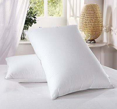 Royal Hotels Goose Down Pillow - 500 Thread Count Cotton Shell, Standard / Queen