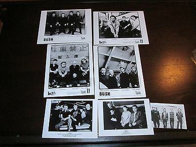 Rare Bush Publicity Press Kit  B&w Media 8  Photos Stills Rock Concert