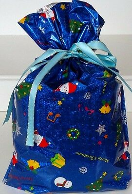 Christmas  Present In Blue Gift Bag - Large