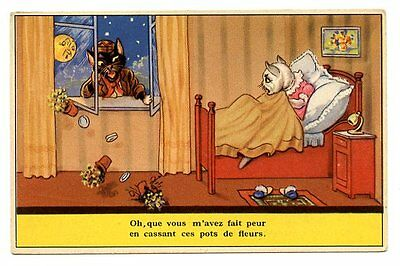 vintage cat postcard dressed cats intruder comes through bedroom window 1954
