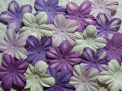 BULK 38mm Paper Flower Petals MPFF1D/PMW: Scrapbooking Cardmaking Party Collage