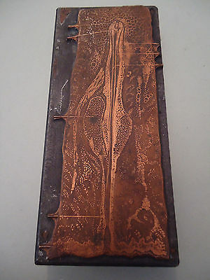 Antique Wood & Cooper Printing Block - Medicine Anatomy Reproductive System ?
