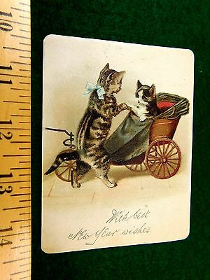 Superb Raphael Tuck & Sons Anthropomorphic Cats New Year Victorian Card F42