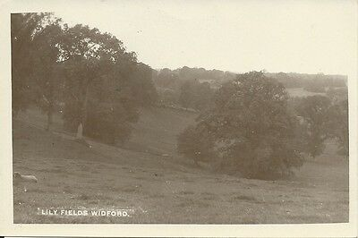 Vintage RP postcard of Lily Fields, Widford, Oxfordshire