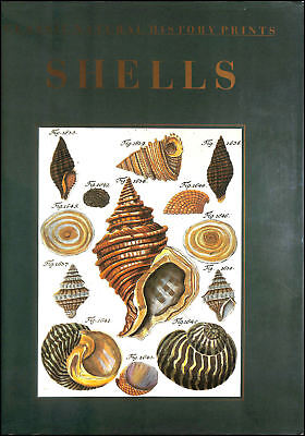 Book of Shells (Classic natural history prints) by Sowerby, G.B.