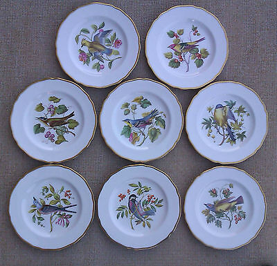 Spode - Audubon Birds Selection Of Hand Painted Cabinet Plates