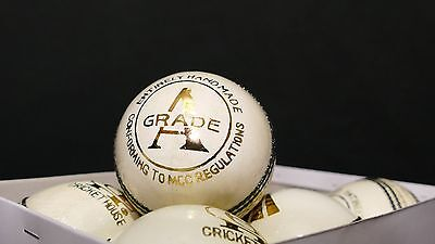 Brand new GRADE A Adult 5 1/2 Oz White Cricket ball - English Leather