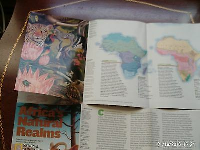 Africa's Natural Realms National Geographic Map