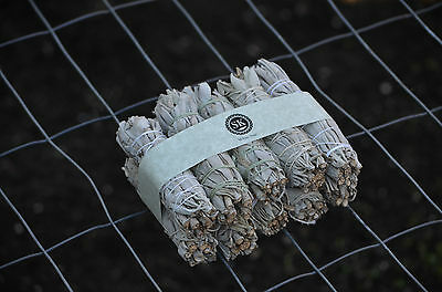 10 Pack White Sage Smudge/Wands Sticks - Lot of 10 Mini Wands - SK WHITE SAGE