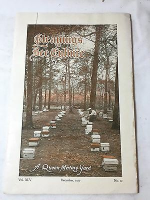 Gleanings in Bee Culture December 1917 A.I. Root Co. Medina OH Apiary Honey Bees