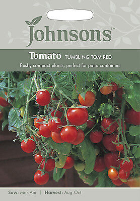 Great for baskets! Johnsons Seeds Tomato Minibel Seed
