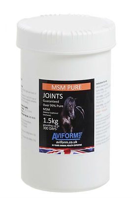Aviform MSM Pure Joint Care Supplement for Horses 1.5kg GrowthGeneral Condition