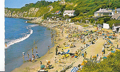 Isle of Wight Postcard - Steephill Cove - Ventnor - Showing Houses    XX77