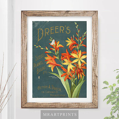 VINTAGE FLOWERS Art Print Poster Orange Yellow Floral Plants Affiche Interior