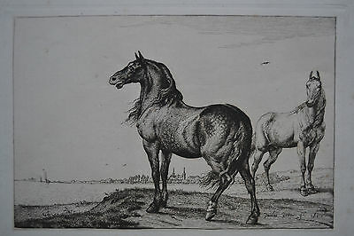 Neighing Horse Paulus Potter Gravure Print By Armand Durand 1878