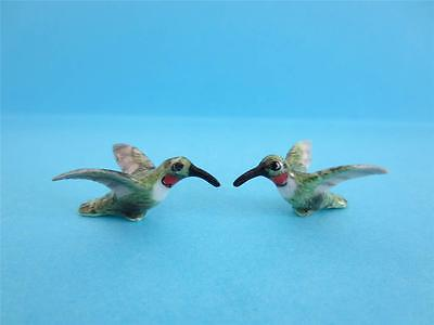 New Northern Rose Super Minis (Miniature) Hummingbird Cute, Comes W/ Green Box