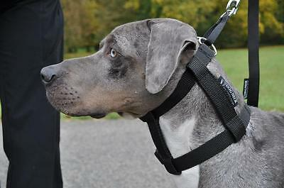 Pulling stop collar for dogs-be a PACK LEADER - Easy