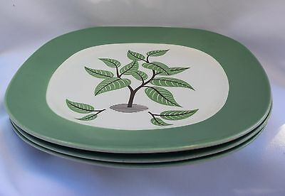Vtg 3 Dinner Plates Coffee Tree Mid Century Modernist Taylor Smith Taylor