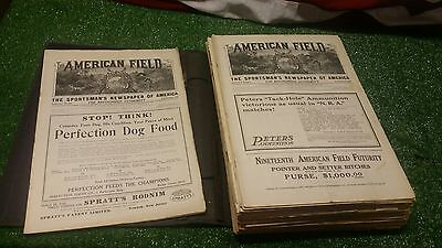 43 The American Field - 1922 Large-Size Magazines of Hunting & Fishing DOGS Rare