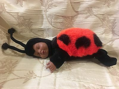 Anne Geddes African American Ladybug sleeping doll plush body vinyl face 9""