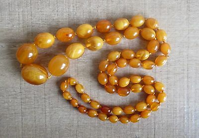 Very Rare Antique Butterscotch Egg Yolk Amber Bead Necklace 100% Natural  60.8g