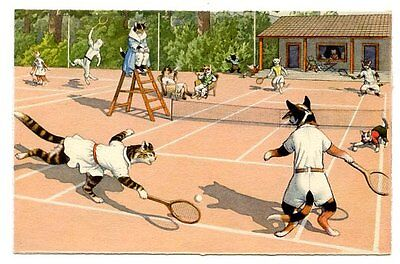 Mainzer Kunzli vintage cat postcard dressed cats play tennis match courts