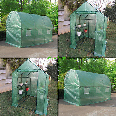 PVC/ PE Greenhouse Compact Walk In Frame Shelves Reinforced Cover Outdoor Garden