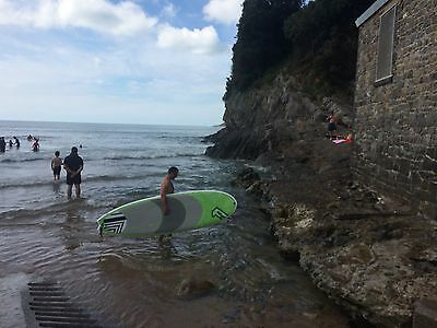 """SUP Fanatic All wave 9'6"""""""