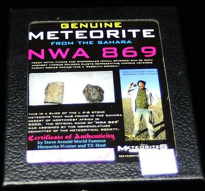 Meteorite From The Sahara Nwa 869 (Mt67)